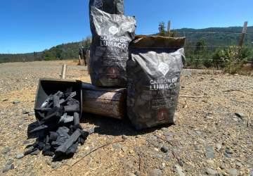 Los carboneros de Lumaco