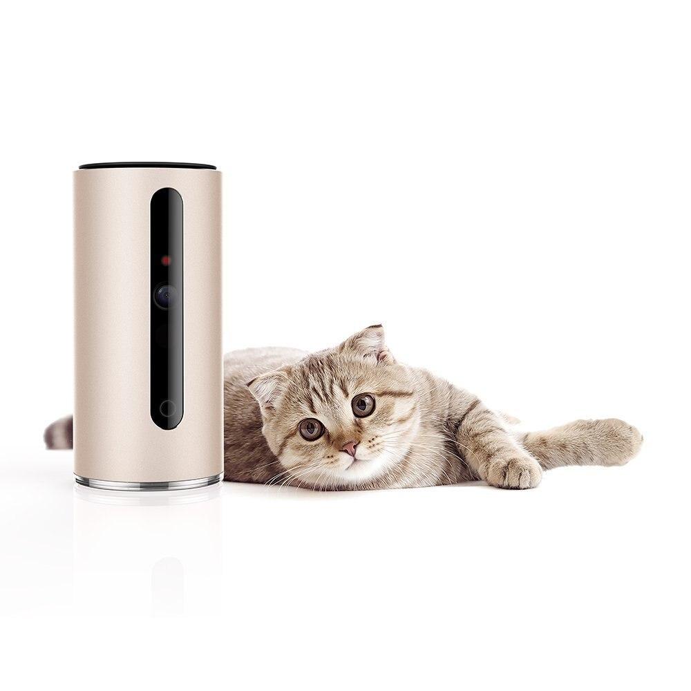 Petkit MATE PRO Camera - Pet Tech: el millonario negocio de la tecnología para mascotas