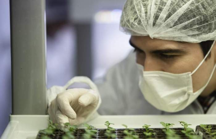 El largo camino para automatizar la agricultura en Chile