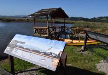 El renacer de las rutas fluviales en Carahue